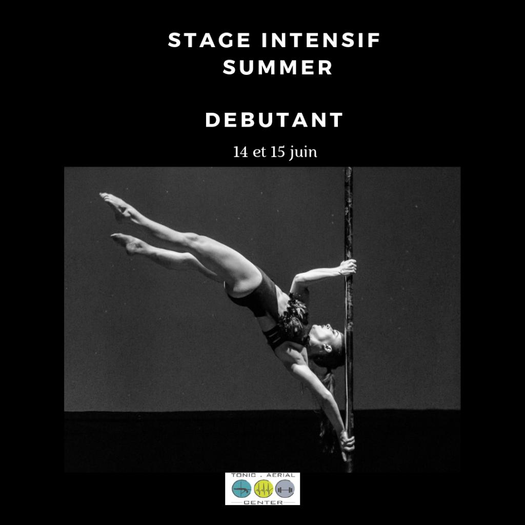 Stage intensif été: Débutant confirmé 15 et 16 juin
